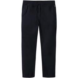 Vêtements Homme Chinos / Carrots Napapijri NP0A4E2Y Bleu