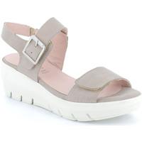 Chaussures Femme Sandales et Nu-pieds Grunland SA1881 Autres