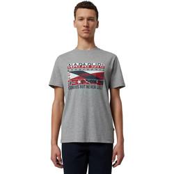 Vêtements Homme T-shirts manches courtes Napapijri NP0A4E36 Gris