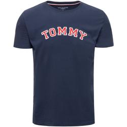Vêtements Homme T-shirts manches courtes Tommy Hilfiger UM0UM01623 Bleu