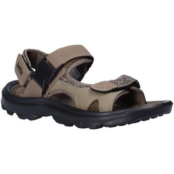 Chaussures Homme Sandales et Nu-pieds Lotto T4769 Marron