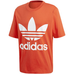 Vêtements Homme T-shirts manches courtes adidas Originals CW1213 Orange