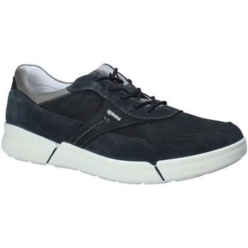 Chaussures Homme Baskets basses IgI&CO 1126 Bleu