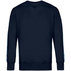 Vêtements Homme Sweats Invicta 4454153/U Bleu