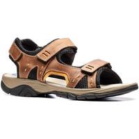 Chaussures Homme Sandales et Nu-pieds Stonefly 108692 Marron