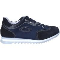Chaussures Garçon Baskets basses Guardiani GK25343G Bleu