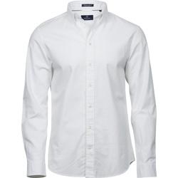 Vêtements Homme Chemises manches longues Tee Jays TJ4000 Blanc
