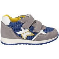 Chaussures Enfant Baskets basses Melania ME1175B8E.C Gris