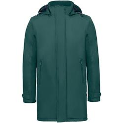 Vêtements Homme Parkas Invicta 4432284/U Vert