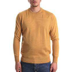 Vêtements Homme Pulls Navigare NV1100530 Jaune