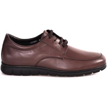 Chaussures Homme Baskets basses Soldini 20583 P Marron