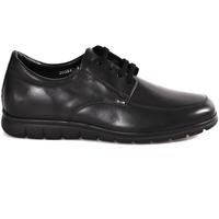 Chaussures Homme Derbies Soldini 20583 P Noir