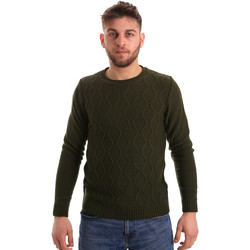 Vêtements Homme Pulls Bradano 155 Vert