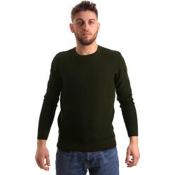 Vêtements Homme Pulls Bradano 168 Vert