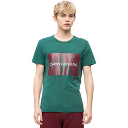 Vêtements Homme T-shirts manches courtes Calvin Klein Jeans J30J307843 Vert