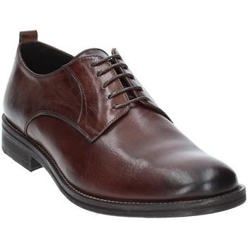 Chaussures Homme Derbies Exton 9553 Marron