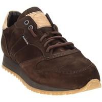 Chaussures Homme Baskets basses Exton 777 Marron
