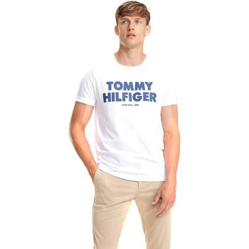 Vêtements Homme T-shirts manches courtes Tommy Hilfiger MW0MW09821 Blanc