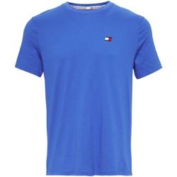 Vêtements Homme T-shirts manches courtes Tommy Hilfiger S20S200074 Bleu