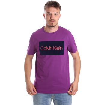 Vêtements Homme T-shirts manches courtes Calvin Klein Jeans K10K103012 Violet