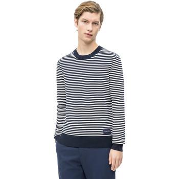 Vêtements Homme Pulls Calvin Klein Jeans K10K103327 Bleu