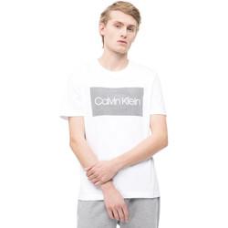 Vêtements Homme T-shirts manches courtes Calvin Klein Jeans K10K103654 Blanc