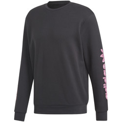 Vêtements Homme Sweats adidas Originals DV2037 Noir