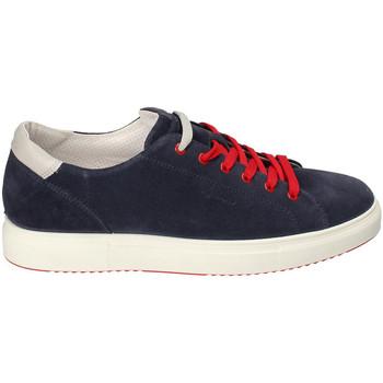 Chaussures Homme Baskets basses IgI&CO 3132711 Bleu