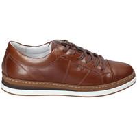 Chaussures Homme Baskets basses IgI&CO 3138122 Marron