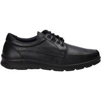 Chaussures Homme Baskets basses Pitillos 4004 Noir