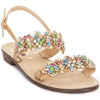 Chaussures Femme Sandales et Nu-pieds Gold&gold A19 GL306 Marron