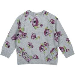Vêtements Enfant Sweats Chicco 09069347000000 Gris