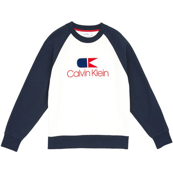 Vêtements Homme Sweats Calvin Klein Jeans K10K103940 Bleu