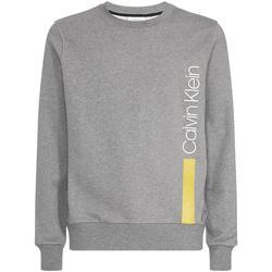 Vêtements Homme Sweats Calvin Klein Jeans K10K103943 Gris