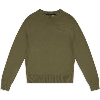 Vêtements Homme Pulls Calvin Klein Jeans J30J313480 Vert