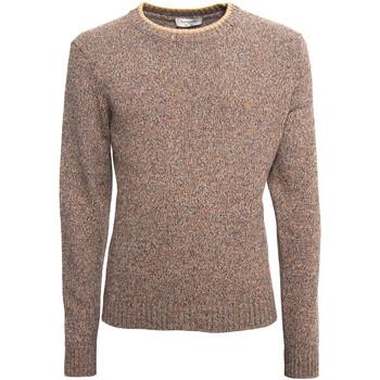 Vêtements Homme Pulls NeroGiardini A974510U Beige