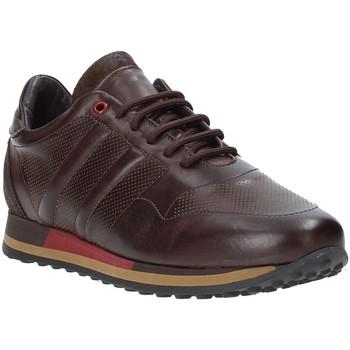 Chaussures Homme Baskets basses Exton 246 Marron