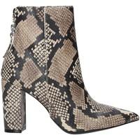 Chaussures Femme Bottines Steve Madden SMSRENN-TANSNK Marron