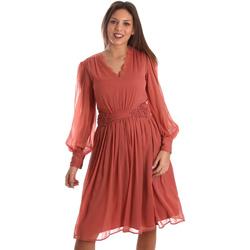 Vêtements Femme Robes courtes Fracomina FR19FMREMI Rose
