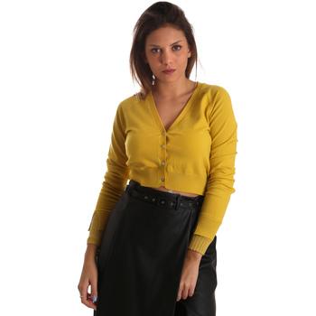 Vêtements Femme Portefeuilles / Porte-monnaie Fracomina FR19FM823 Jaune