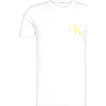 Vêtements Homme T-shirts manches courtes Calvin Klein Jeans J30J315175 Blanc