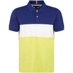Vêtements Homme Polos manches courtes Tommy Hilfiger MW0MW13092 Bleu