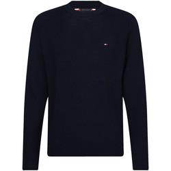 Vêtements Homme Pulls Tommy Hilfiger MW0MW13122 Bleu