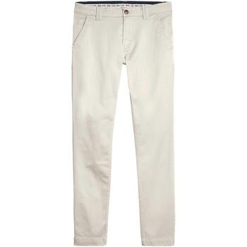 Vêtements Homme Chinos / Carrots Tommy Jeans DM0DM06518 Gris