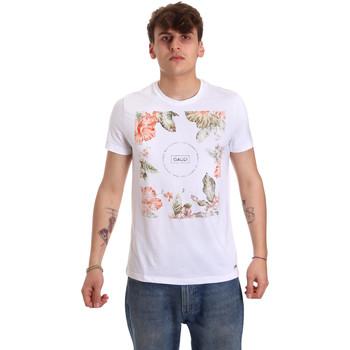 Vêtements Homme T-shirts manches courtes Gaudi 011BU64070 Blanc