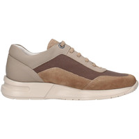 Chaussures Homme Baskets basses CallagHan 91311 Beige