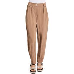 Vêtements Femme Chinos / Carrots Gaudi 011BD25052 Marron