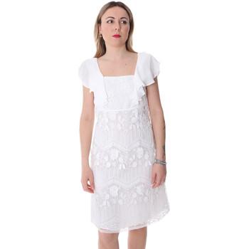 Vêtements Femme Robes courtes Fracomina FR20SP584 Blanc