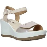 Chaussures Femme Sandales et Nu-pieds IgI&CO 5179400 Beige