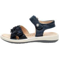 Chaussures Fille Sandales et Nu-pieds Naturino 0502724 04 Bleu